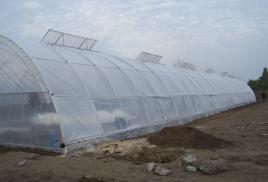 Теплица термос 10*50 с крышным и боковым проветриванием.