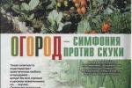 Совместимость культур овощей на грядке