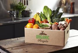 Бизнес круглый год: как заработать на свежих овощах
